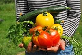 vegetables-742095__180